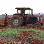 Để vườn cây chất lượng tốt, năng suất cao