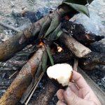 Lên Tây Bắc ăn măng rừng nướng