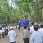 Phát triển cao su tại Lào và Campuchia: Hướng đến năng suất cao và bền vững