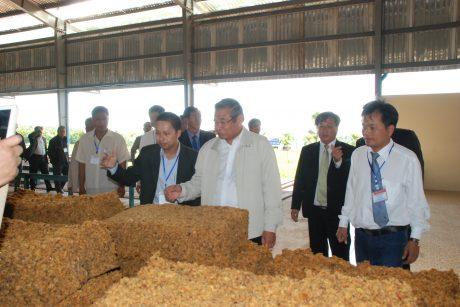 Sản xuất mủ cốm tại Nhà máy Mang Yang Ratanakiri. Ảnh: Văn Vĩnh