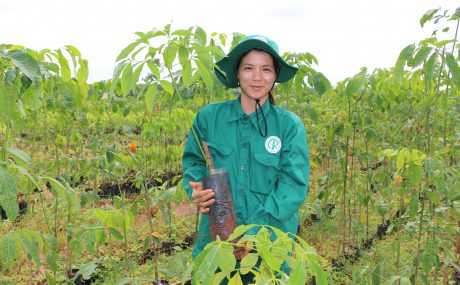 Bùi Thị Trang.