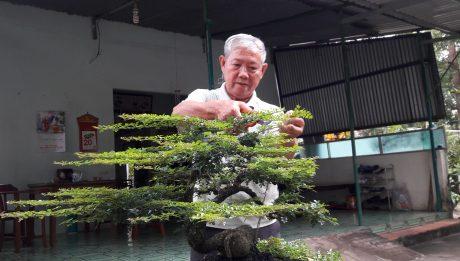 Ông Lại Công Quyền chăm sóc vườn kiểng khi nghỉ hưu.