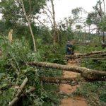 Kêu gọi hỗ trợ người dân miền Trung bị bão lũ