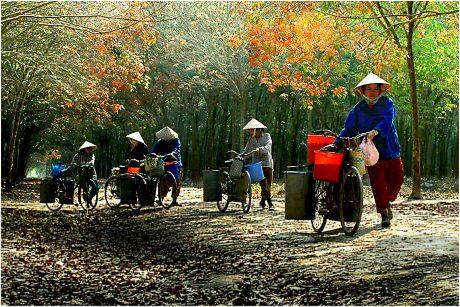 Ảnh: Nguyễn Văn Đảnh