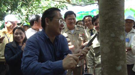 Ngài Sok Lu Chủ tịch Tỉnh Kongpong Thom vương quốc CamPuChia Cạo những nhát dao đầu tiên khơi dòng ngựa trắng