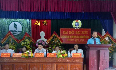 Ông Võ Việt Ngân - Phó Chủ tịch CĐ CSVN phát biểu chỉ đạo đại hội.