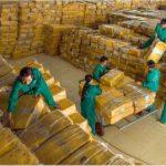 Phát triển vị thế tập đoàn kinh tế có quy mô lớn