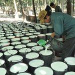 Cao su Tây Ninh phấn đấu khai thác vượt 6% kế hoạch
