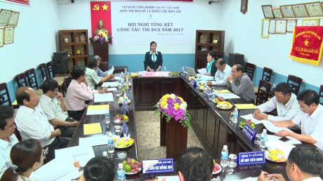 Bà Lê Thị Xuyến – PGĐ Công ty CP chế biến gỗ Thuận An, khối trưởng  báo cáo hoạt động toàn khối năm 2017