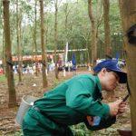 Cao su Chư Păh thưởng thi đua nước rút trên 1 tỷ đồng