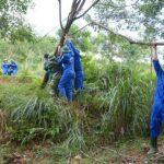 Đoàn Thanh niên Cao su Hà Tĩnh khắc phục hậu quả bão số 10