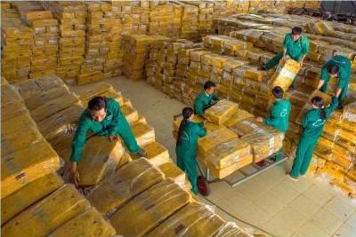 Kế hoạch kinh doanh cao su của riêng Công ty mẹ - Tập đoàn trong 3 năm tới phải đạt hơn 1.000 tỷ đồng. Ảnh: Võ Văn Bằng