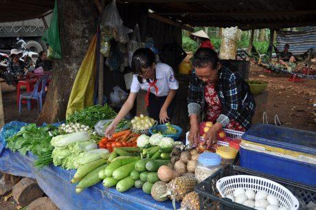 Ngoài giờ học em Lê Thị Kiều Trâm còn ra quán phụ bà nội bán rau