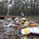 Bãi rác ô nhiễm giữa lô cao su