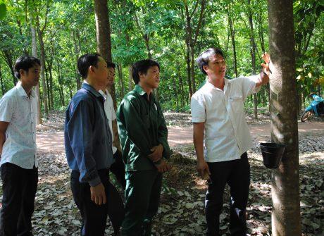 Cán bộ kỹ thuật công ty trao đổi với công nhân NT Bãi Lau về kỹ thuật khai thác