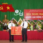 Cao su Đồng Phú 12 năm liền đạt năng suất vườn cây 2 tấn/ha