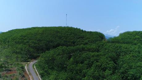 Vườn cây cao su Công ty CPCS Sơn La nhìn từ trên cao. Ảnh: Ng. Cường.