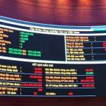 IPO VRG: Giá trúng bình quân 13.011 đồng/CP