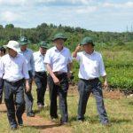 Công tác nông nghiệp thắng lợi lớn