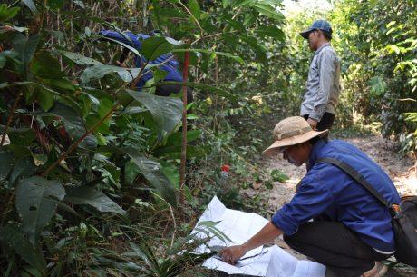 Cán bộ kỹ thuật Công ty CPCS Chư Sê Kampong Thom đo đạc cắm mốc khai hoang trồng cao su những ngày đầu. Ảnh: N.K