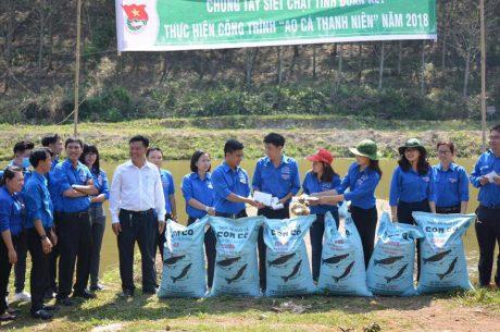 Các đoàn cơ sở hỗ trợ ĐTN Công ty CPCS Bảo Lâm thực hiện công trình Ao cá thanh niên