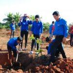 Thực hiện 3 công trình thanh niên gây quỹ tại Cao su Mang Yang