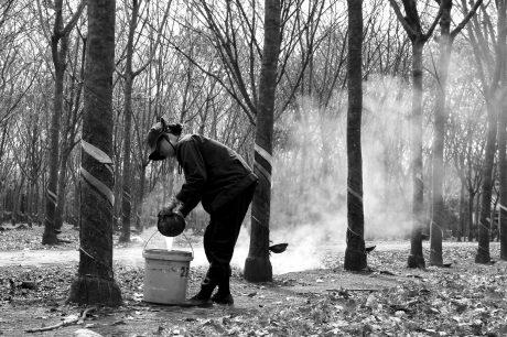Ảnh: Bùi Thái Dũng