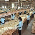 Gỗ Tây Ninh hướng đến xuất khẩu sản phẩm tinh chế