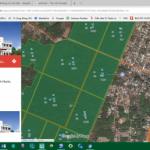Ứng dụng phần mềm quản lý vườn cây ở cao su Phú Riềng