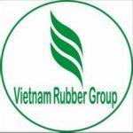 Điều chỉnh cơ cấu cổ phần Công ty mẹ - VRG
