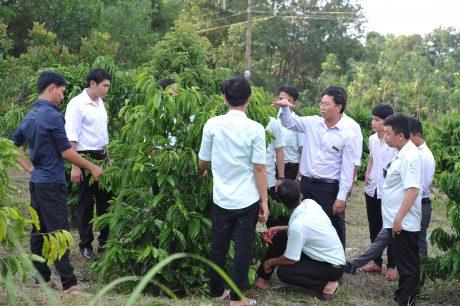 Sinh viên khoa nông học Trường Cao đẳng CN Cao su trong giờ đi thực tế. Ảnh: Tùng Châu