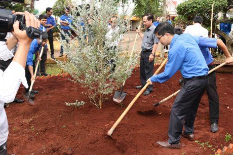 ĐVTN công ty tích cực tham gia trồng cây