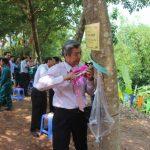 Cao su Mường Nhé - Điện Biên ra quân khai thác mủ cao su
