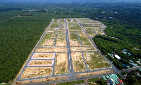 Sẽ có 1.800 ha đất cao su bị thu hồi nhường chỗ cho việc xây dựng sân bay Long Thành.