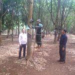 Nông trường Ea Hiao - Thành viên mới câu lạc bộ 2 tấn