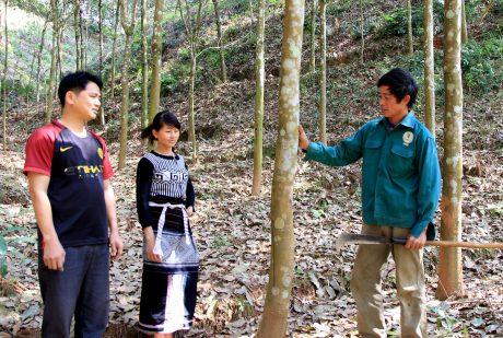 Nhiều người dân xã Nậm Tăm, huyện Sìn Hồ vừa góp đất, vừa tham gia làm công nhân Công ty CPCS Lai Châu.