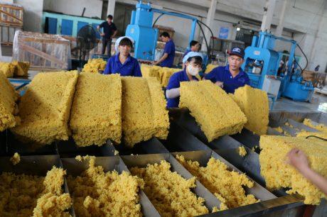 Năm 2018 Công ty CPCS Phước Hòa chế biến hơn 1.532 tấn sản phẩm cao su mang thương hiệu VRG