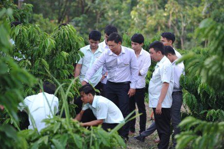 Sinh viên khoa nông học trong giờ thực tập. Ảnh: Tùng Châu.