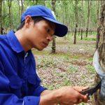 Nguyễn Văn Quý - Người thợ trẻ giỏi toàn quốc