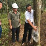 Lãnh đạo VRG làm việc tại tỉnh Sơn La