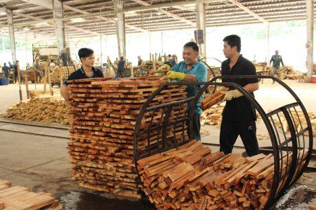 Mỗi năm gỗ và các mặt hàng làm từ gỗ cao su đem lại kim ngạch 1,7 - 1,8 tỉ USD