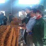 Cao su Sơn La ra mắt sản phẩm mủ đầu tiên