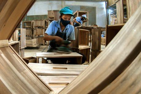Sản xuất gỗ. Ảnh: Ngô Thị Thu Ba.