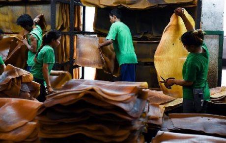 Người lao động phân loại tấm cao su thô tại một nhà máy tại tỉnh Rayong, Thái Lan. Ảnh: AGENCE FRANCE-PRESSE