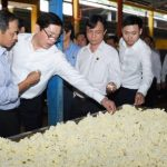 Đảng ủy khối DNTW thăm và làm việc tại Cao su Đồng Phú, Phú Riềng