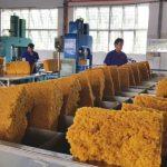 Hiệp định CPTPP tác động đến ngành cao su: Cơ hội & thách thức