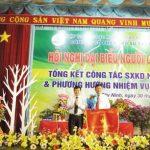 Cao su Tây Ninh thu nhập bình quân trên 8,7 triệu đồng/người
