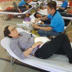 Hơn 230 CB.CNV, ĐVTN Cao su Bà Rịa hiến máu tình nguyện
