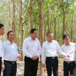 Lãnh đạo tỉnh Kampong Thom tích cực hỗ trợ các công ty cao su thuộc VRG