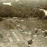 Sự ra đời của ngành khai thác cao su ở Việt Nam